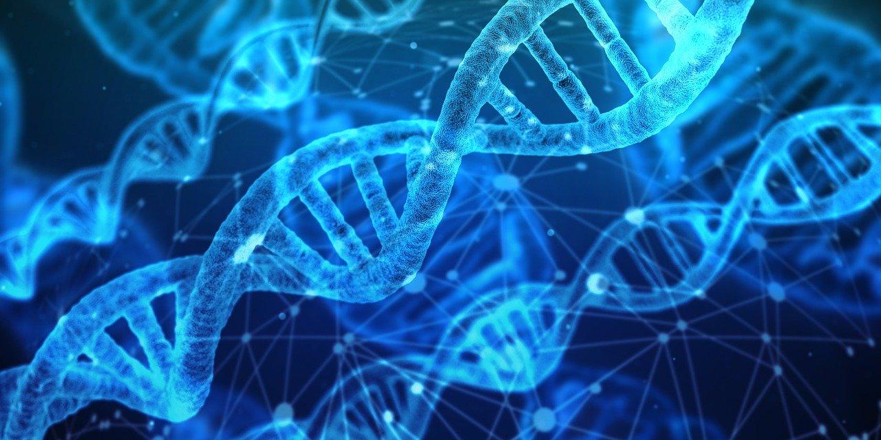 Health Benefits DNA